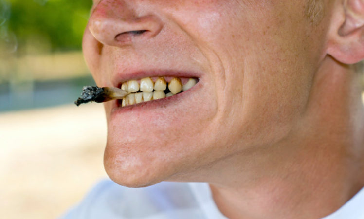 Marijuana and oral health